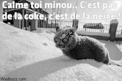 """Résultat de recherche d'images pour """"neige humour images"""""""